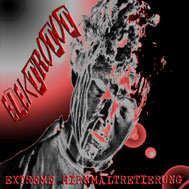 Elektrotot - Extreme Hirnmaltretierung (2003)