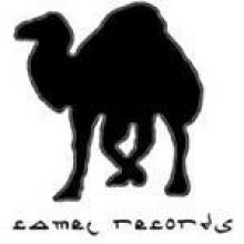 Camel Records
